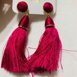 Brand New Fuschia Tassle Earrings